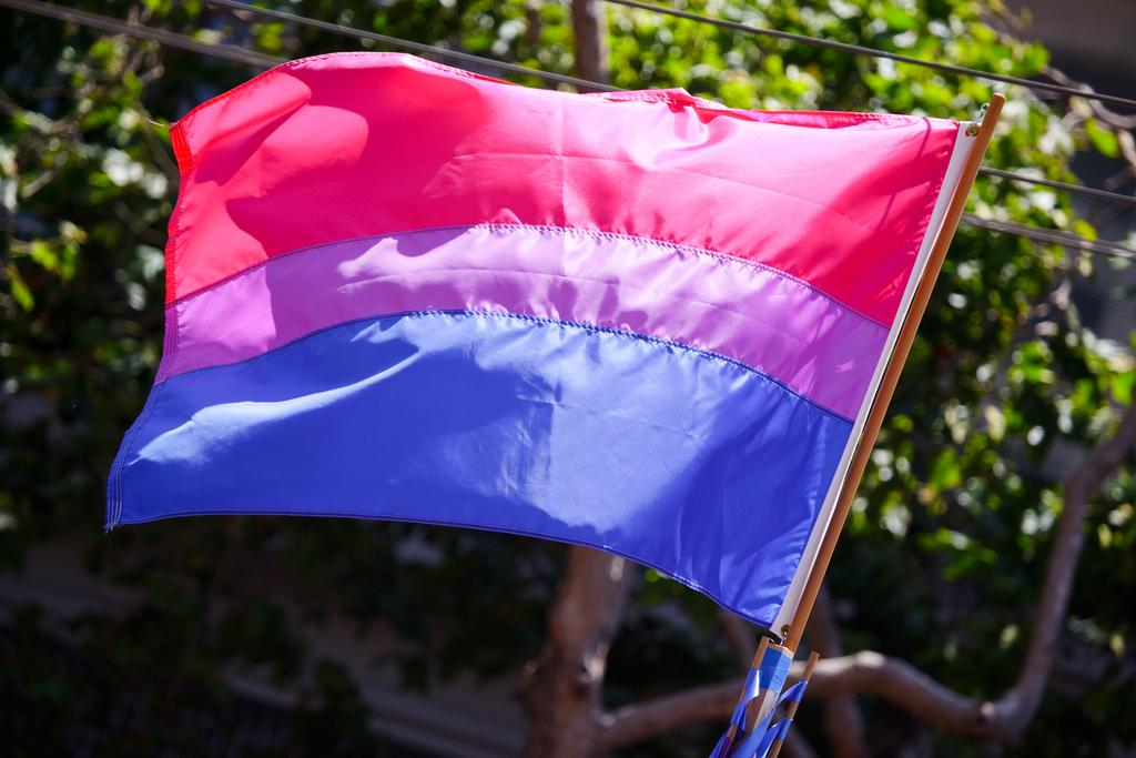 biszexuális büszkeség zászlaja